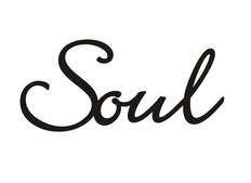theSOULwithin